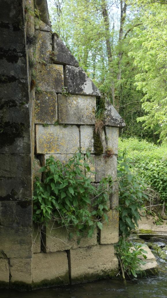 door verwaarlozing en plantengroei ontzet muurwerk.